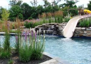 pool-design-trend