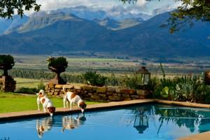 country garden pool