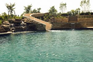 Are You Looking for Swimming Pool Contractors in Clarksville?